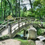 Piękny ,a także estetyczny ogród to zasługa wielu godzin spędzonych  w jego zaciszu w toku pielegnacji.